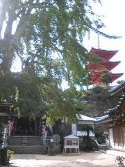 shoudoshima55.jpg